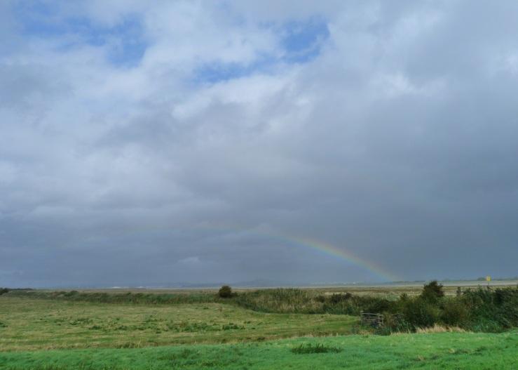 Rainbows Steart 19 Sept 2018